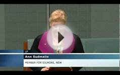 Ann Sudmalis MP - Higher Education reforms
